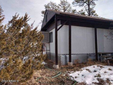 2931 Paint Pony Lane, Heber, AZ 85928 (MLS #6027364) :: Conway Real Estate