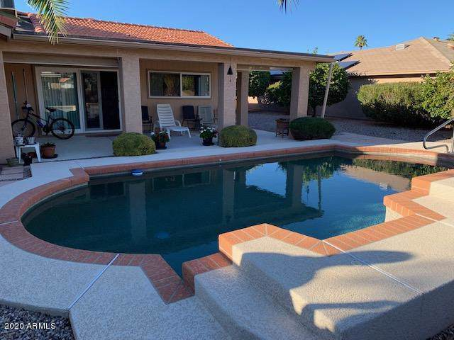 25861 S New Town Drive, Sun Lakes, AZ 85248 (MLS #6027600) :: Selling AZ Homes Team