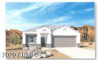 30961 W Mulberry Drive, Buckeye, AZ 85396 (MLS #6027859) :: The Kenny Klaus Team