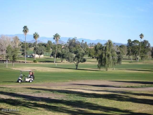 19240 N Star Ridge Drive, Sun City West, AZ 85375 (MLS #6028719) :: Nate Martinez Team