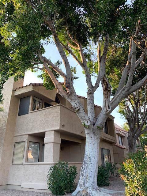 10055 E Mountainview Lake Drive #2047, Scottsdale, AZ 85258 (MLS #6028962) :: My Home Group
