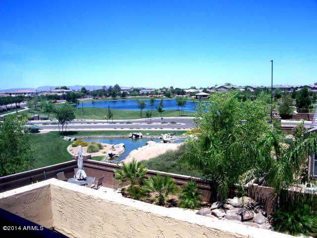 382 W Macaw Drive, Chandler, AZ 85286 (MLS #6029008) :: The Property Partners at eXp Realty