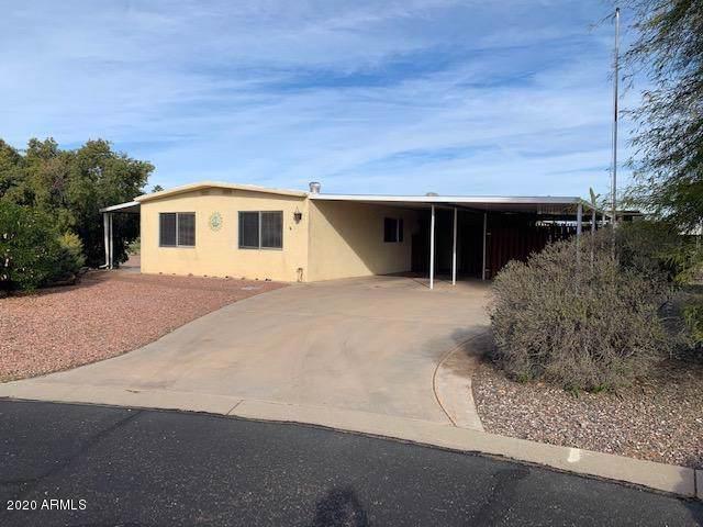 8240 E Dolphin Avenue, Mesa, AZ 85208 (MLS #6029121) :: My Home Group