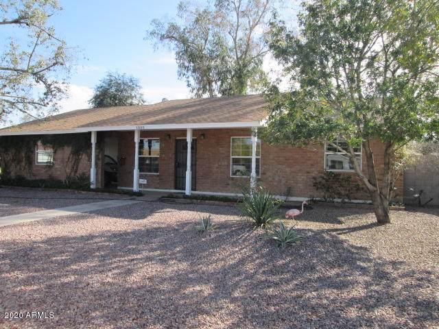 1009 W Emerald Avenue, Mesa, AZ 85210 (MLS #6029315) :: Brett Tanner Home Selling Team