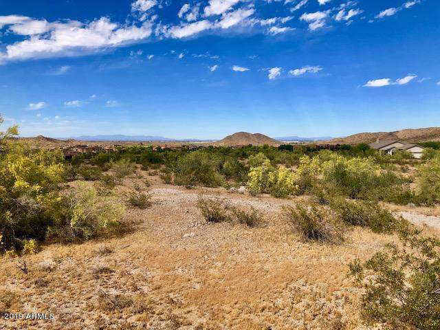 9645 S Krista Drive E, Goodyear, AZ 85338 (MLS #6030466) :: Long Realty West Valley