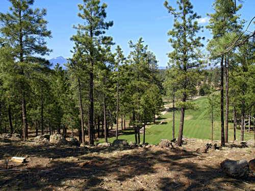 2832 Andrew Douglass Drive, Flagstaff, AZ 86005 (MLS #6034729) :: Riddle Realty Group - Keller Williams Arizona Realty