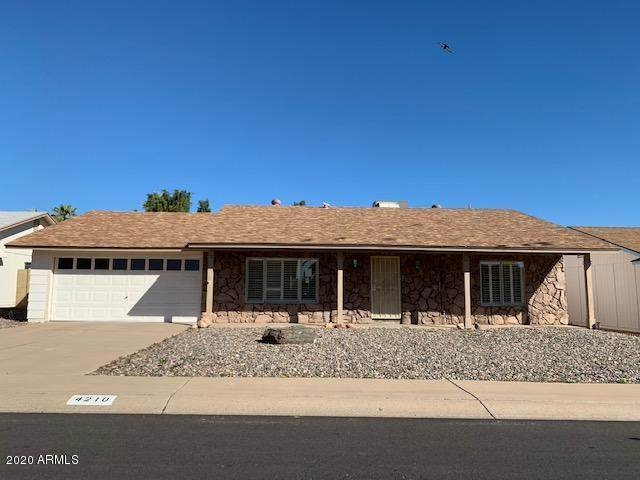 4210 E Mandan Street, Phoenix, AZ 85044 (MLS #6038715) :: The Kenny Klaus Team