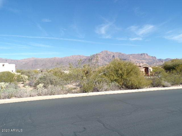 4553 S Strike-It-Rich Drive, Gold Canyon, AZ 85118 (MLS #6039439) :: The Kenny Klaus Team