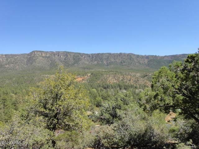 5059 N Hilltop Drive, Pine, AZ 85544 (MLS #6041191) :: Conway Real Estate