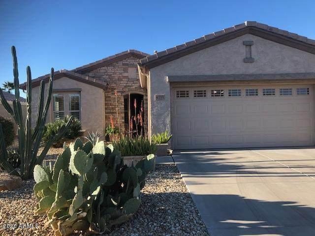 4255 E Carob Drive, Gilbert, AZ 85298 (MLS #6042122) :: My Home Group