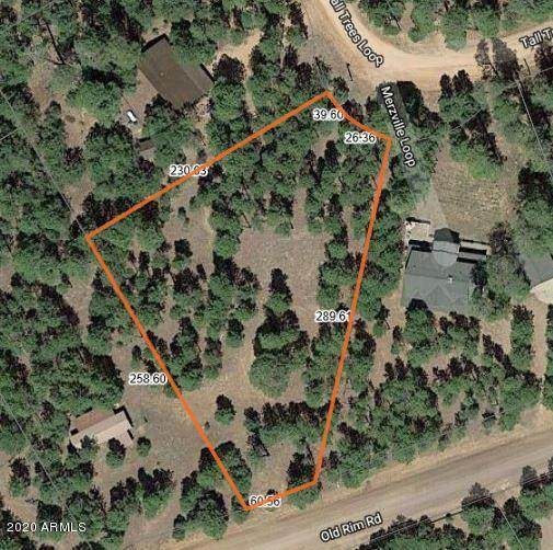 2400 Tall Trees Loop, Forest Lakes, AZ 85931 (MLS #6042443) :: The W Group