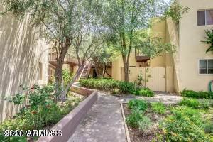 6240 N 16TH Street #39, Phoenix, AZ 85016 (MLS #6042451) :: Kepple Real Estate Group