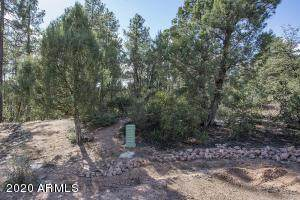 3103 E Indian Ruin, Payson, AZ 85541 (MLS #6042687) :: Arizona Home Group