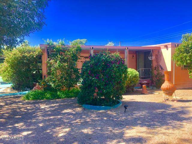 2426 W Scenic Street, Apache Junction, AZ 85120 (MLS #6043072) :: Conway Real Estate
