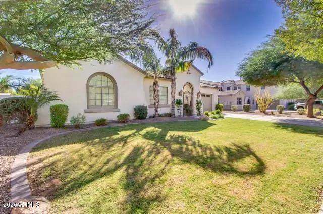 6047 S Mack Avenue, Gilbert, AZ 85298 (MLS #6043559) :: Revelation Real Estate