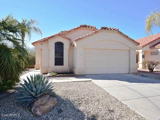 17639 W Hayden Drive, Surprise, AZ 85374 (MLS #6045170) :: The Garcia Group
