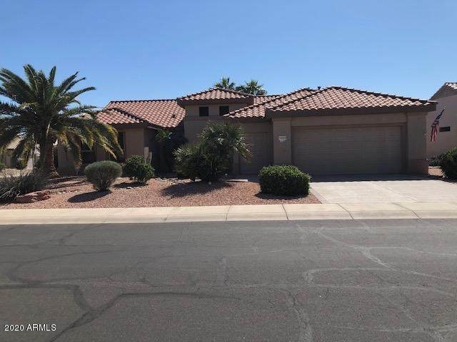 15223 W Waterford Drive, Surprise, AZ 85374 (MLS #6045482) :: Brett Tanner Home Selling Team