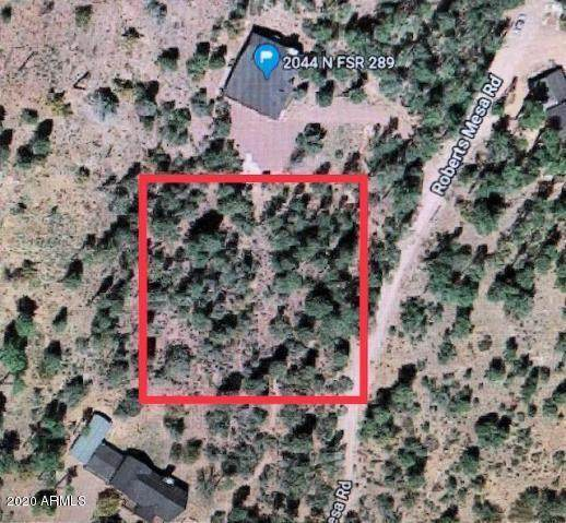 Lot 2 N Tonto Rim Ranch Road, Payson, AZ 85541 (MLS #6046948) :: Riddle Realty Group - Keller Williams Arizona Realty