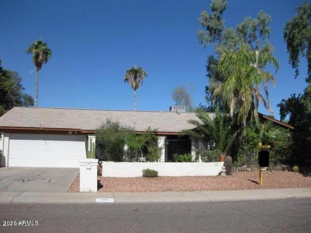 1010 W Renee Drive, Phoenix, AZ 85027 (MLS #6047546) :: REMAX Professionals