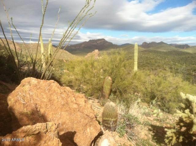 3376 N Elephant Butte Road, Queen Valley, AZ 85118 (MLS #6052186) :: Revelation Real Estate