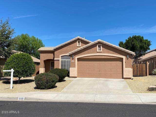 9110 E Halifax Street, Mesa, AZ 85207 (MLS #6054759) :: The Helping Hands Team