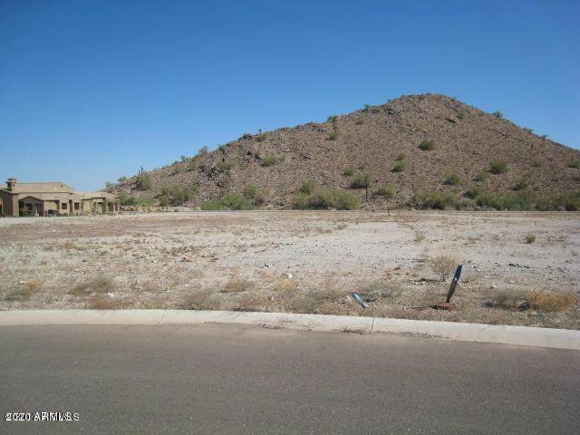 21335 W Jojoba Court, Buckeye, AZ 85396 (MLS #6054813) :: Conway Real Estate