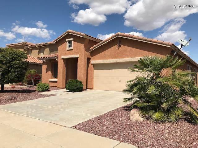 15009 N 176TH Lane, Surprise, AZ 85388 (MLS #6058080) :: Nate Martinez Team