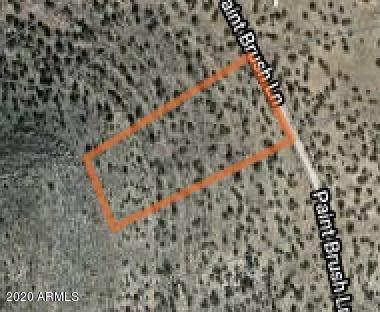 54910 N Paintbrush Lane, Seligman, AZ 86337 (MLS #6058290) :: Brett Tanner Home Selling Team