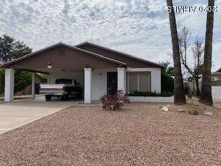 2535 E Dahlia Drive, Phoenix, AZ 85032 (MLS #6058396) :: CANAM Realty Group