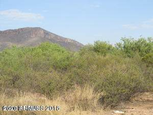 TBD Carlson Way, Huachuca City, AZ 85616 (MLS #6058704) :: Conway Real Estate