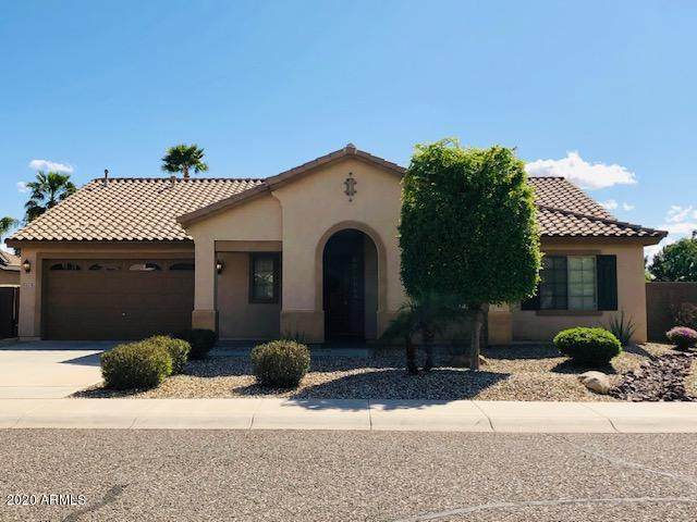 14423 W St Moritz Lane, Surprise, AZ 85379 (MLS #6059507) :: The Kenny Klaus Team