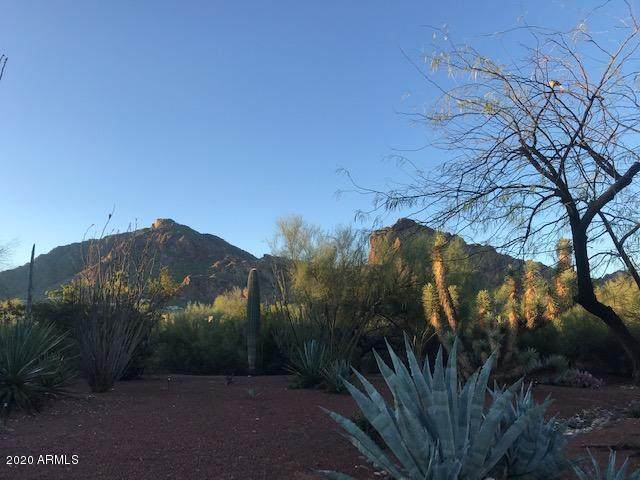 6412 N 52ND Place, Paradise Valley, AZ 85253 (MLS #6059593) :: Long Realty West Valley