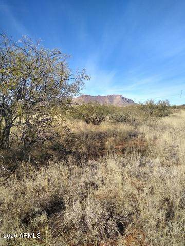Lot 17 Chula Vista Estates, Huachuca City, AZ 85616 (MLS #6060733) :: Conway Real Estate