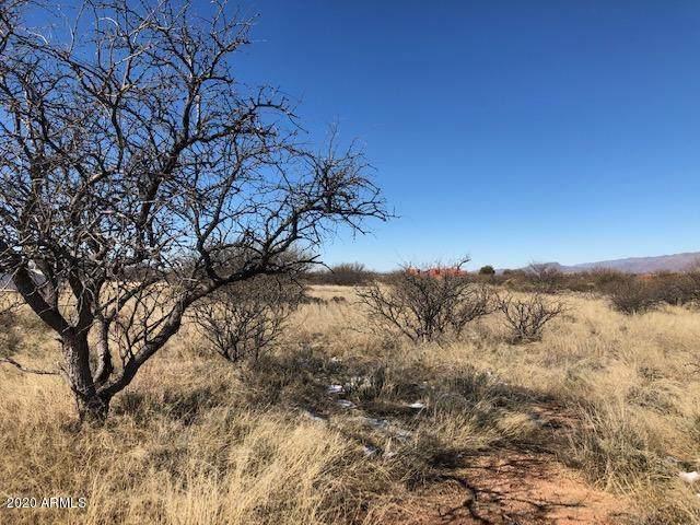 Lot #89 W Thunder Pass Road, Benson, AZ 85602 (MLS #6060851) :: Yost Realty Group at RE/MAX Casa Grande