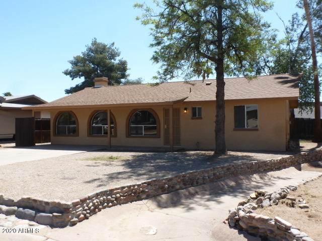 9059 E Gary Lane, Mesa, AZ 85207 (MLS #6062062) :: Homehelper Consultants
