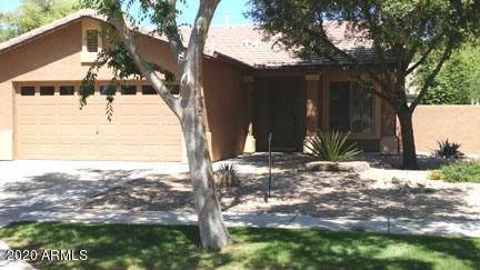 3540 E Cullumber Court, Gilbert, AZ 85234 (MLS #6062379) :: My Home Group