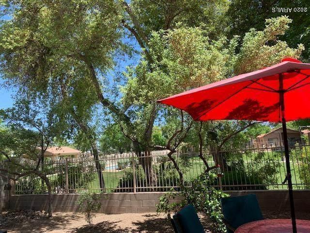 929 S Tucana Lane, Gilbert, AZ 85296 (MLS #6064217) :: Keller Williams Realty Phoenix
