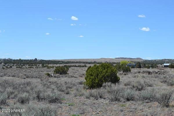 TBD Freeman Hollow, Snowflake, AZ 85937 (MLS #6064617) :: neXGen Real Estate