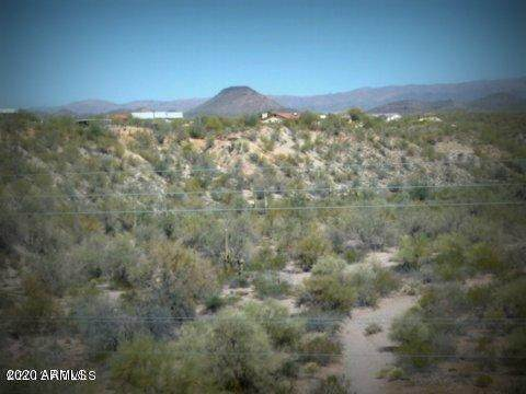 43925 Saguaro Blossom Lane - Photo 1