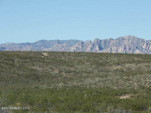 TBD S Via Serena, Tombstone, AZ 85638 (MLS #6069778) :: Homehelper Consultants