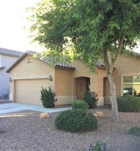 10954 E Sombra Avenue, Mesa, AZ 85212 (MLS #6073499) :: Klaus Team Real Estate Solutions