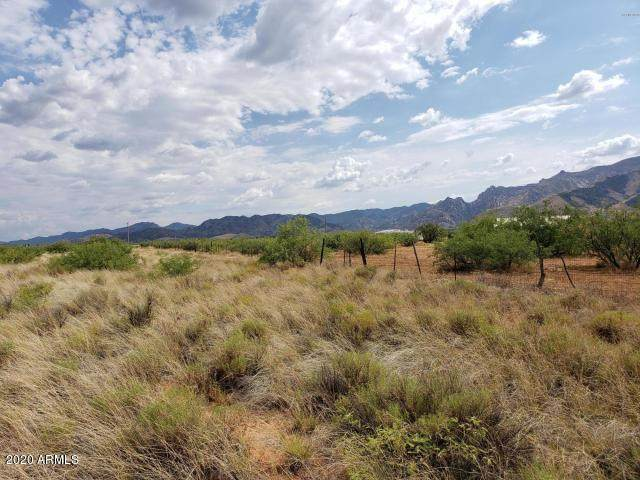 10 Acre On Trigger Lane, Cochise, AZ 85606 (MLS #6074291) :: Service First Realty