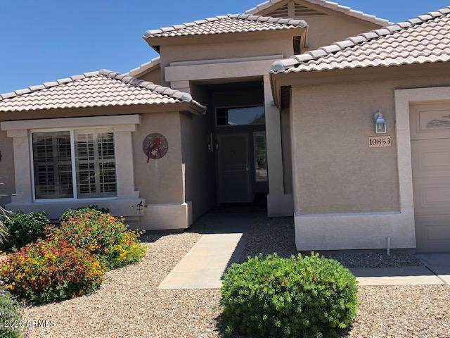 10853 W Wikieup Lane, Sun City, AZ 85373 (MLS #6074626) :: The Laughton Team
