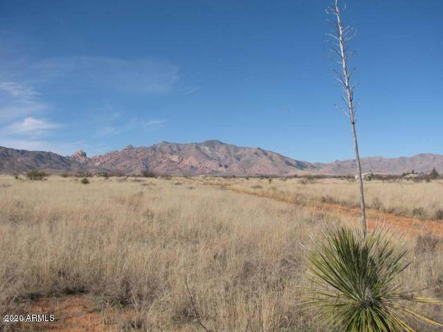 1.65 Acre(2 Lots) Windsong&Topaz, Pearce, AZ 85625 (MLS #6075877) :: The Riddle Group