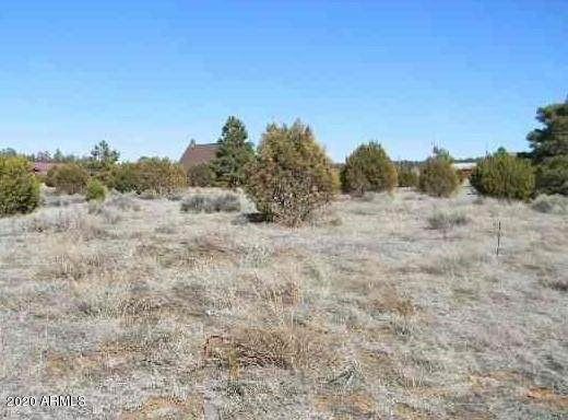 2242 Sitgreaves Drive, Overgaard, AZ 85933 (MLS #6078150) :: The Results Group