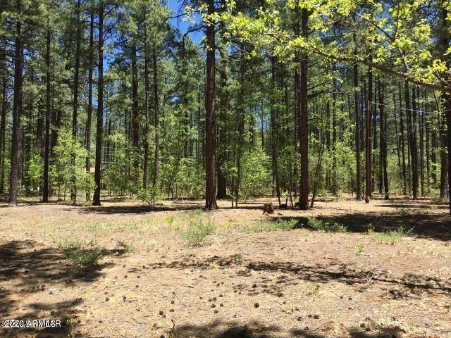 2983 Cedar Lane, Pinetop, AZ 85935 (MLS #6078752) :: Riddle Realty Group - Keller Williams Arizona Realty