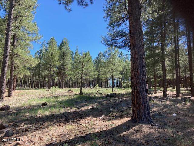 2662 Tom Pollock, Flagstaff, AZ 86005 (MLS #6079480) :: The Daniel Montez Real Estate Group