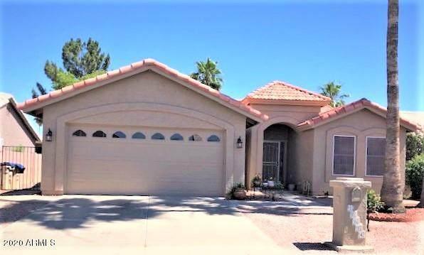 10614 E Nacoma Drive, Sun Lakes, AZ 85248 (MLS #6081817) :: Keller Williams Realty Phoenix