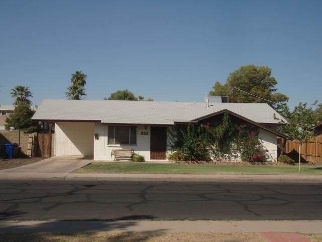 832 E Dolphin Avenue, Mesa, AZ 85204 (MLS #6081827) :: The Daniel Montez Real Estate Group