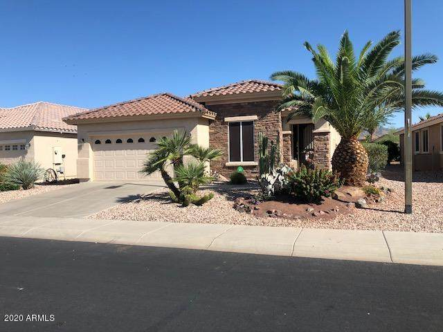 22840 W Moonlight Path, Buckeye, AZ 85326 (MLS #6082056) :: Brett Tanner Home Selling Team